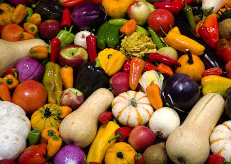 Colorful Vegetable Display